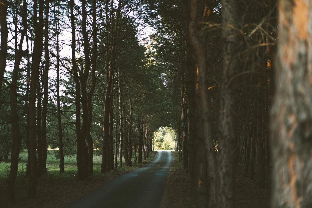 Wellness a Fenyves Erdőben